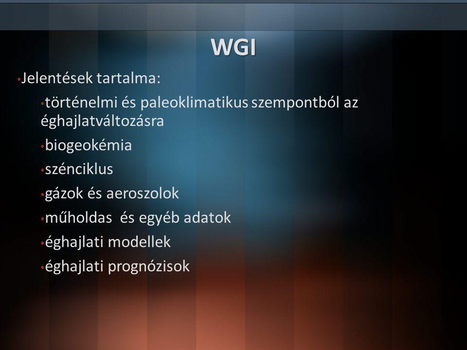 WGI Jelentések tartalma: