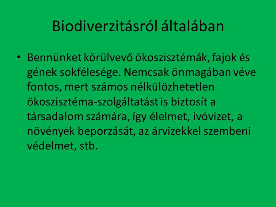 Biodiverzitásról általában
