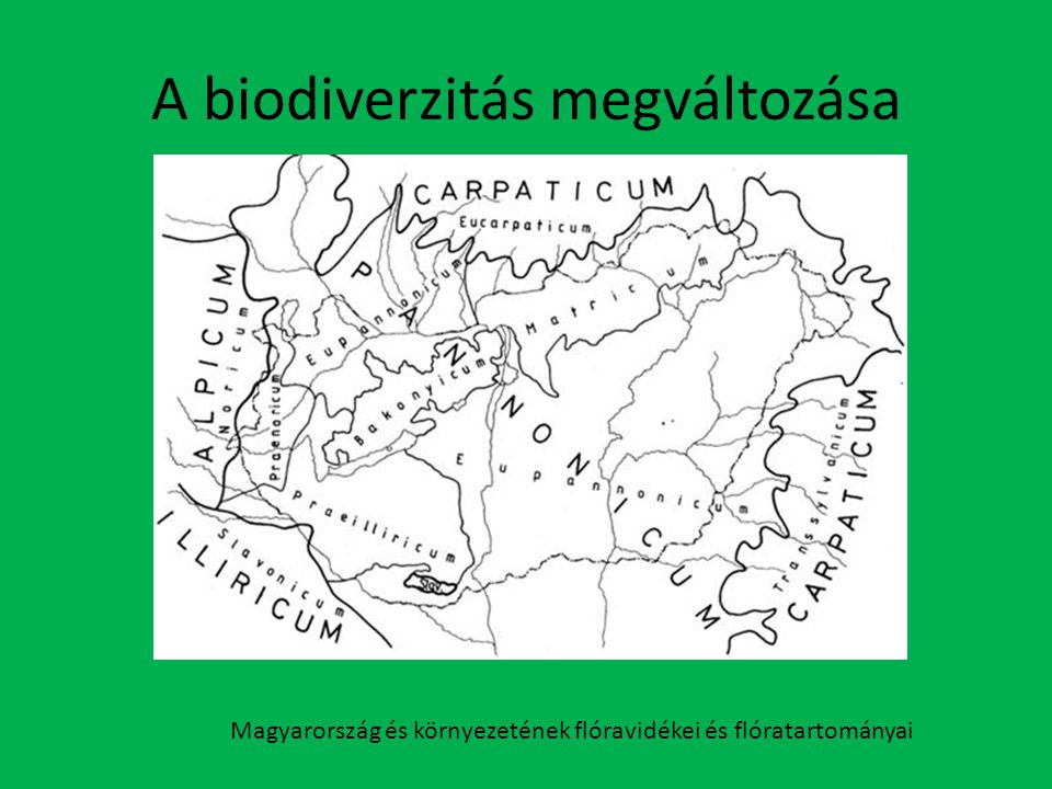 A biodiverzitás megváltozása