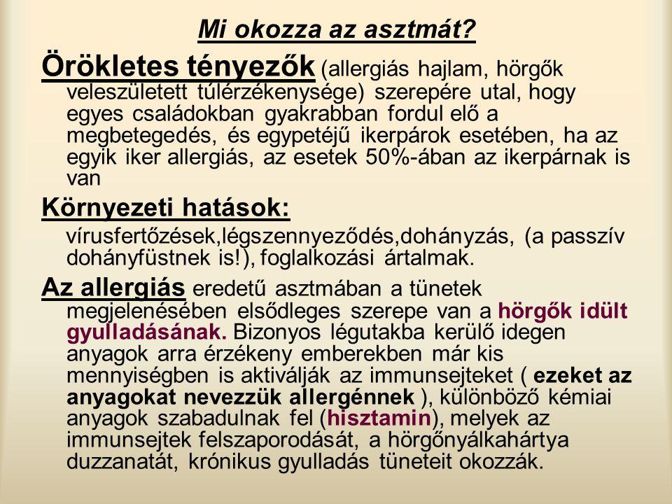 Mi okozza az asztmát