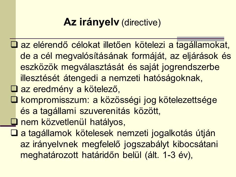 Az irányelv (directive)