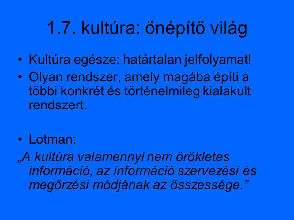 1.7. kultúra: önépítő világ