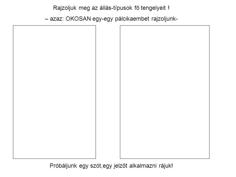 Rajzoljuk meg az állás-típusok fő tengelyeit !