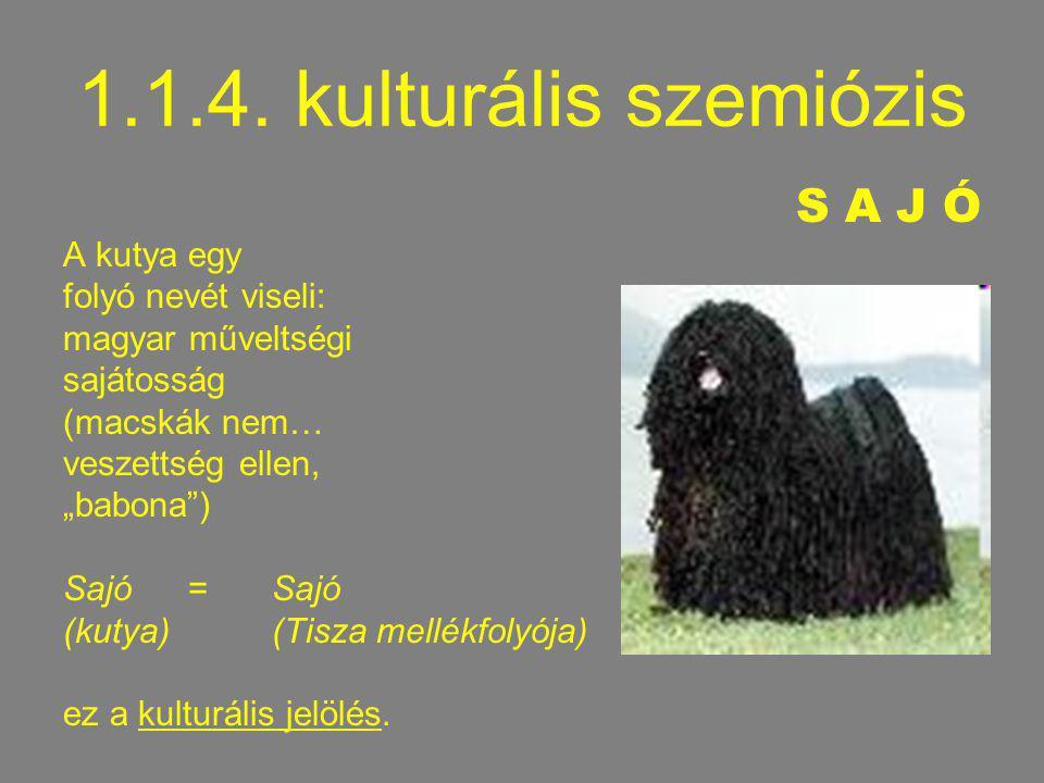1.1.4. kulturális szemiózis S A J Ó A kutya egy folyó nevét viseli: