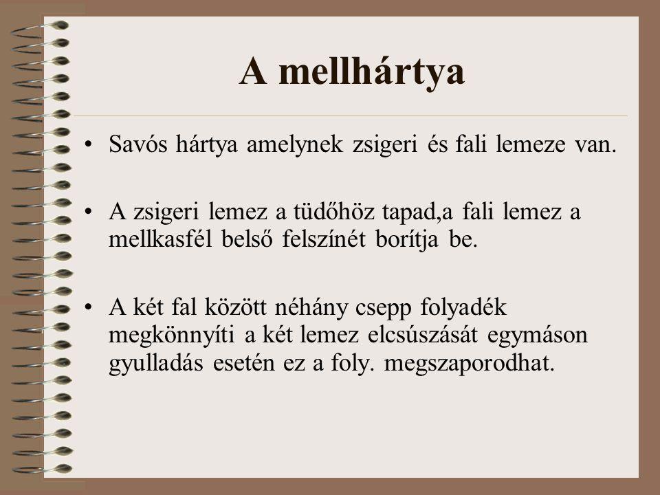 A mellhártya Savós hártya amelynek zsigeri és fali lemeze van.