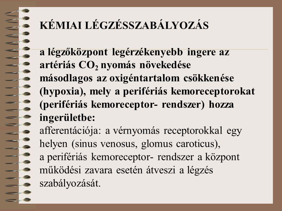 KÉMIAI LÉGZÉSSZABÁLYOZÁS