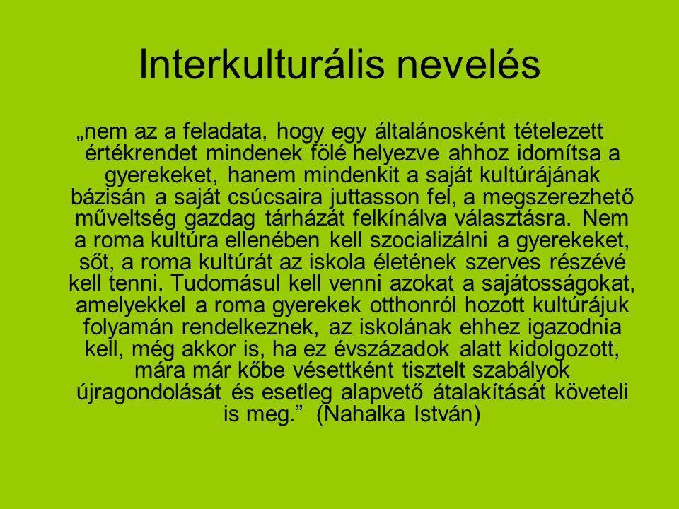 Interkulturális nevelés