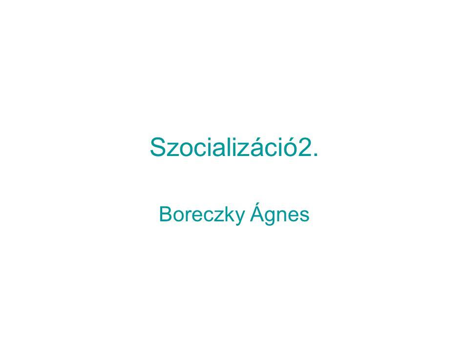 Szocializáció2. Boreczky Ágnes