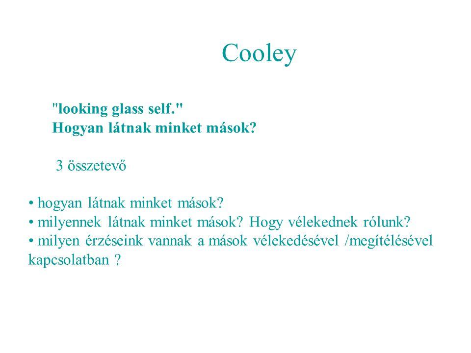 Cooley looking glass self. Hogyan látnak minket mások 3 összetevő