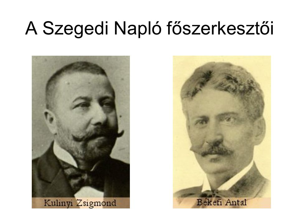 A Szegedi Napló főszerkesztői