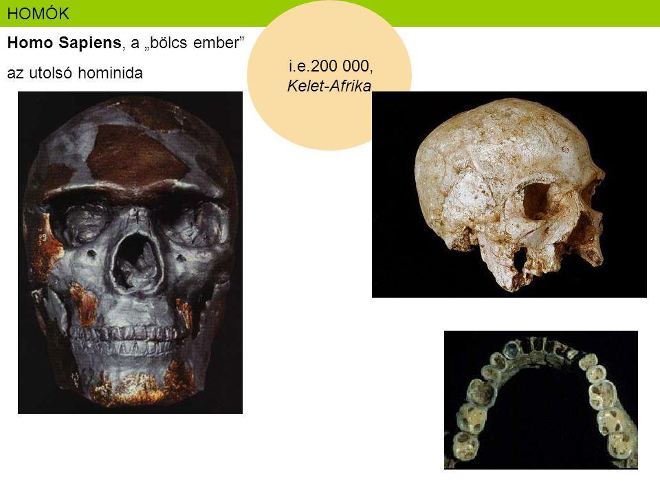 """HOMÓK i.e.200 000, Kelet-Afrika Homo Sapiens, a """"bölcs ember az utolsó hominida"""