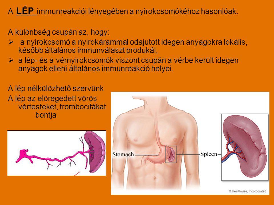 A LÉP immunreakciói lényegében a nyirokcsomókéhoz hasonlóak.