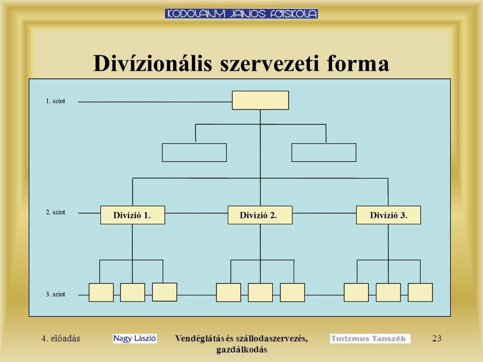 Divízionális szervezeti forma