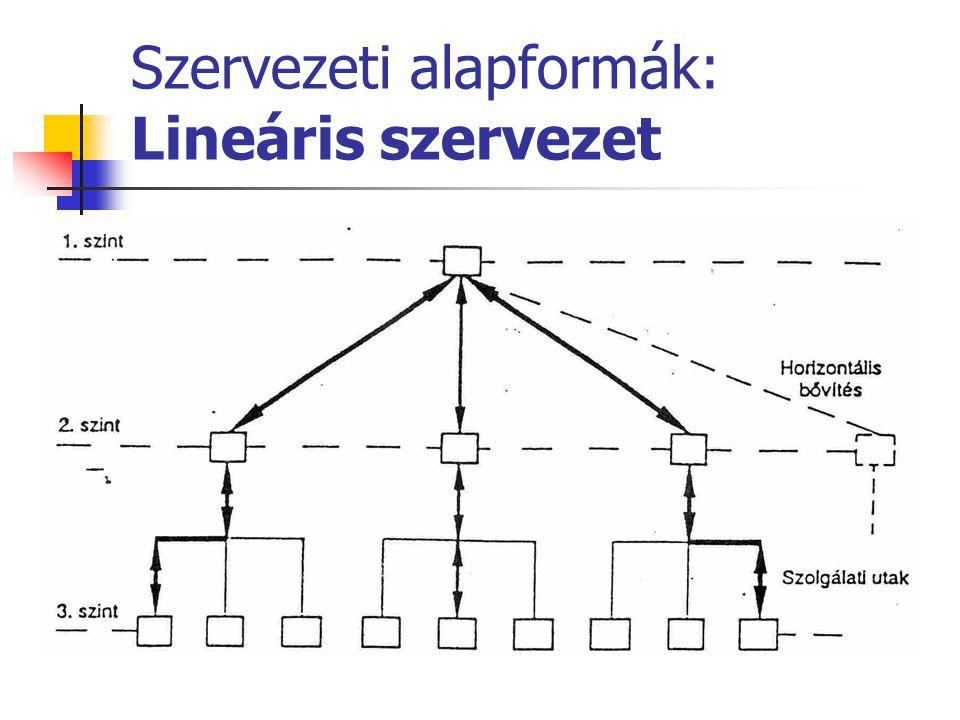 Szervezeti alapformák: Lineáris szervezet