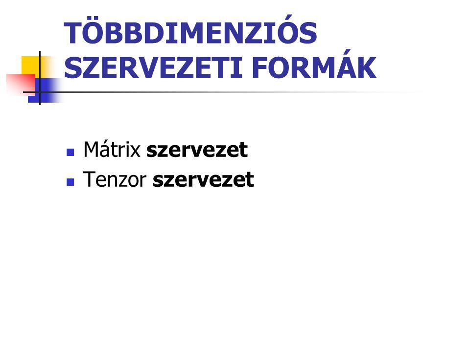 TÖBBDIMENZIÓS SZERVEZETI FORMÁK