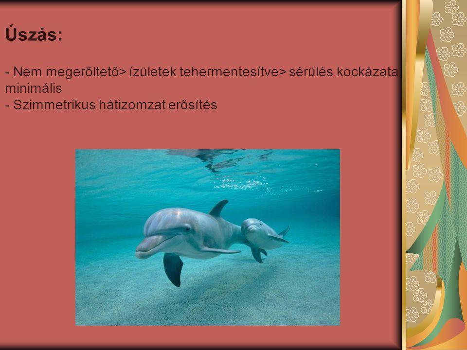 Úszás: Nem megerőltető> ízületek tehermentesítve> sérülés kockázata minimális.