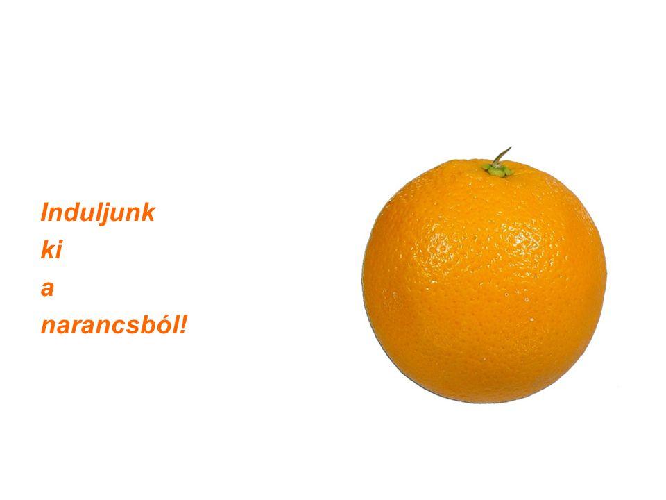 Induljunk ki a narancsból!