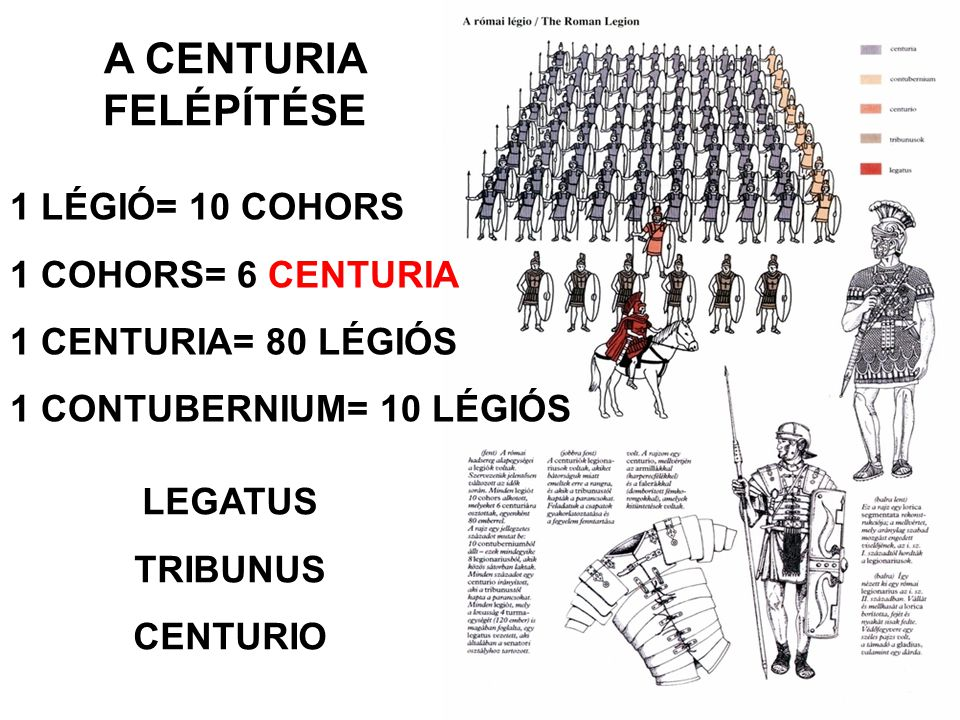 A CENTURIA FELÉPÍTÉSE 1 LÉGIÓ= 10 COHORS 1 COHORS= 6 CENTURIA