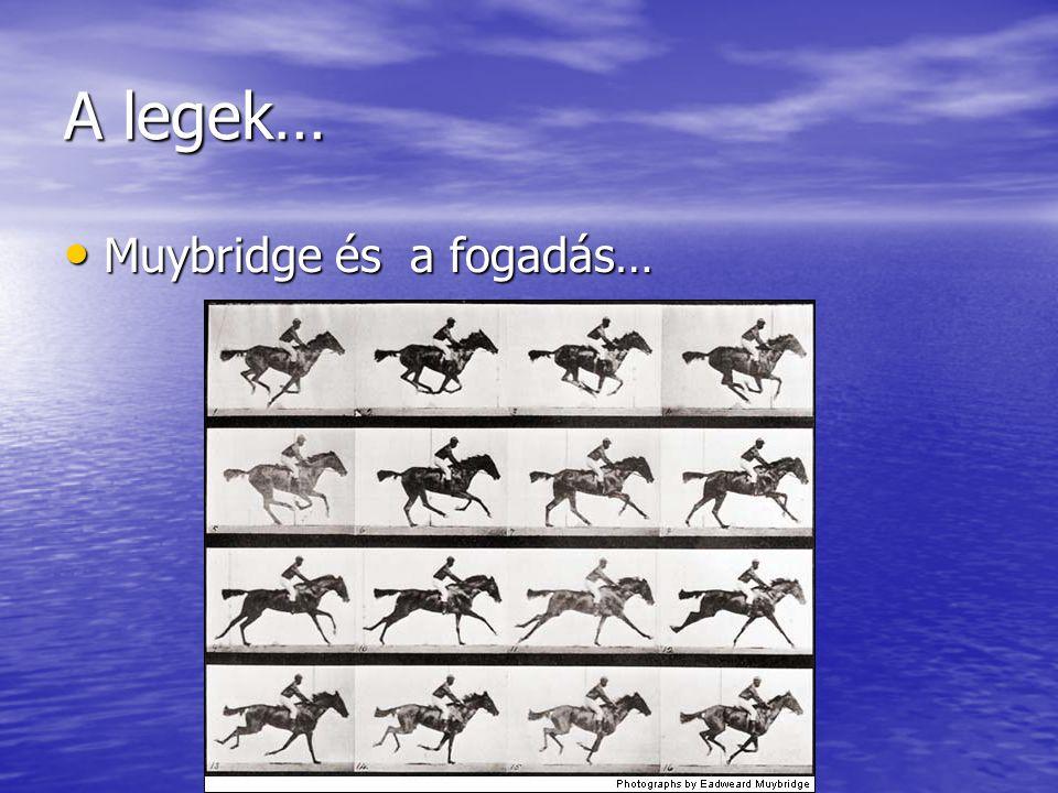 A legek… Muybridge és a fogadás…