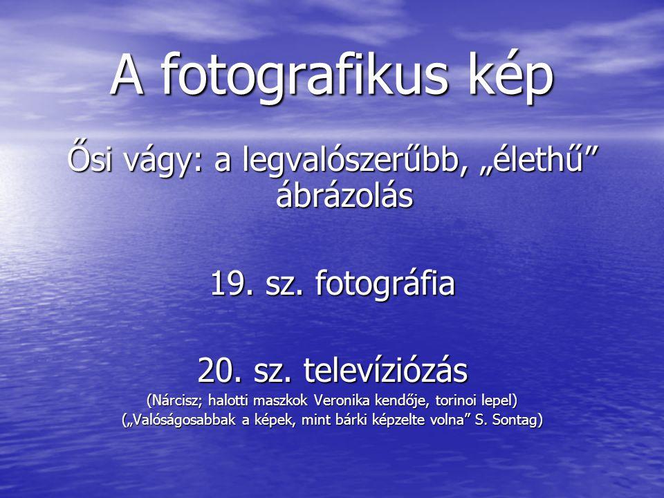 """A fotografikus kép Ősi vágy: a legvalószerűbb, """"élethű ábrázolás"""