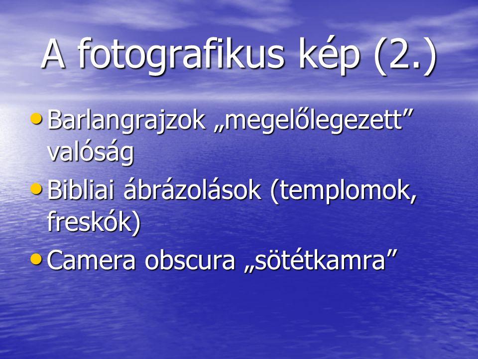 """A fotografikus kép (2.) Barlangrajzok """"megelőlegezett valóság"""