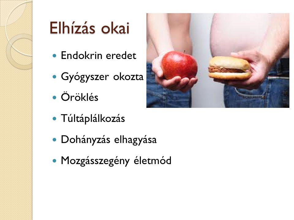 Elhízás okai Endokrin eredet Gyógyszer okozta Öröklés Túltáplálkozás