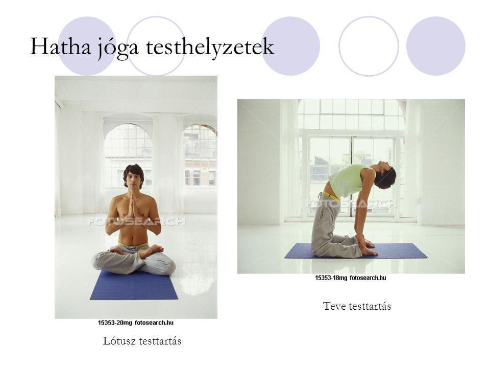 Hatha jóga testhelyzetek