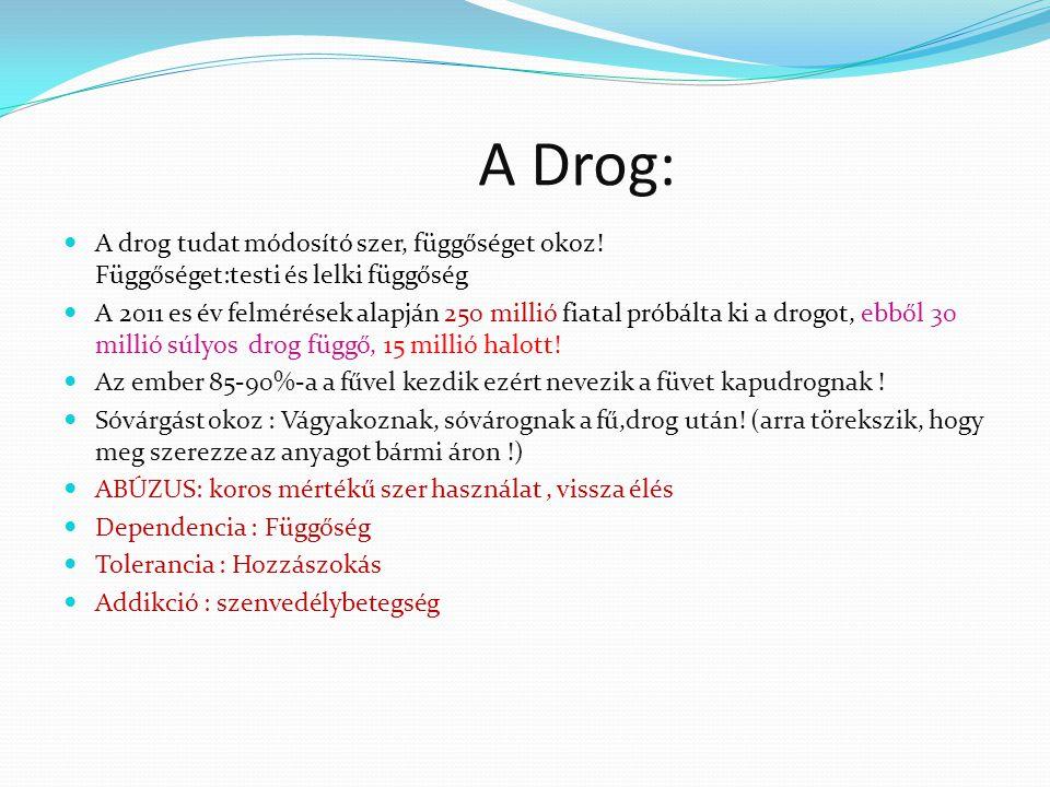 A Drog: A drog tudat módosító szer, függőséget okoz! Függőséget:testi és lelki függőség.