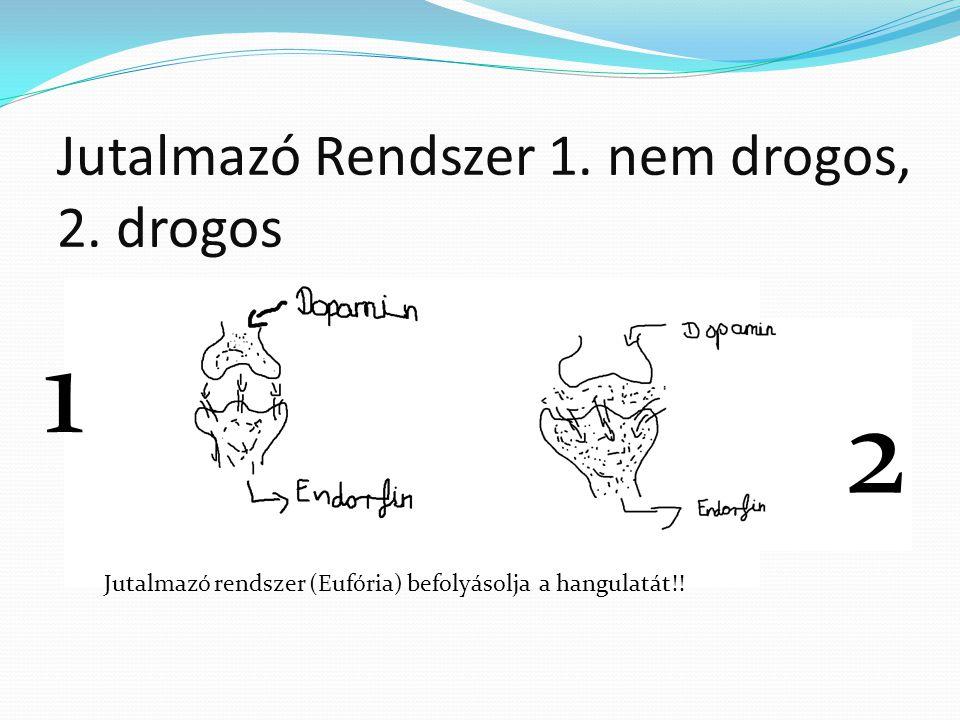 Jutalmazó Rendszer 1. nem drogos, 2. drogos