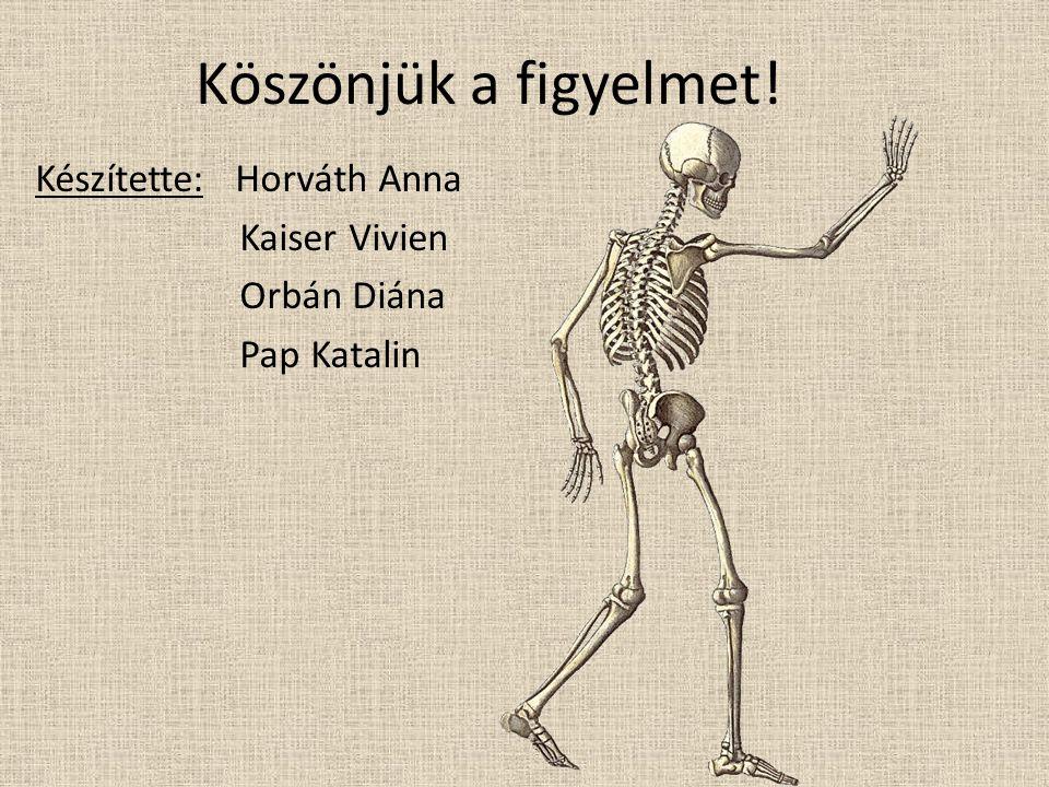 Köszönjük a figyelmet! Készítette: Horváth Anna Kaiser Vivien Orbán Diána Pap Katalin