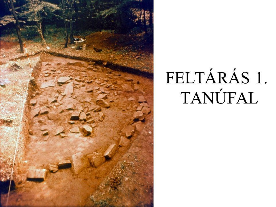 FELTÁRÁS 1. TANÚFAL