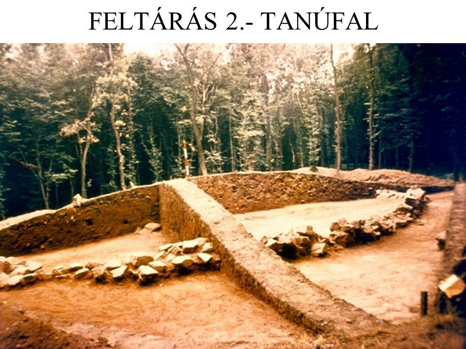 FELTÁRÁS 2.- TANÚFAL