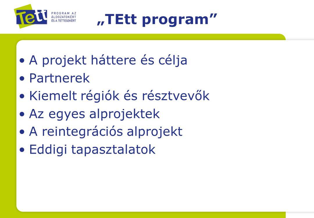 """""""TEtt program A projekt háttere és célja Partnerek"""