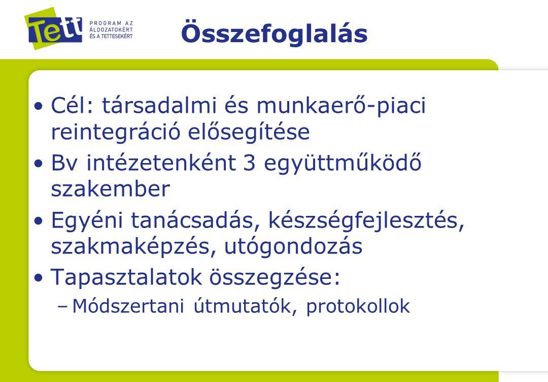 Összefoglalás Cél: társadalmi és munkaerő-piaci reintegráció elősegítése. Bv intézetenként 3 együttműködő szakember.