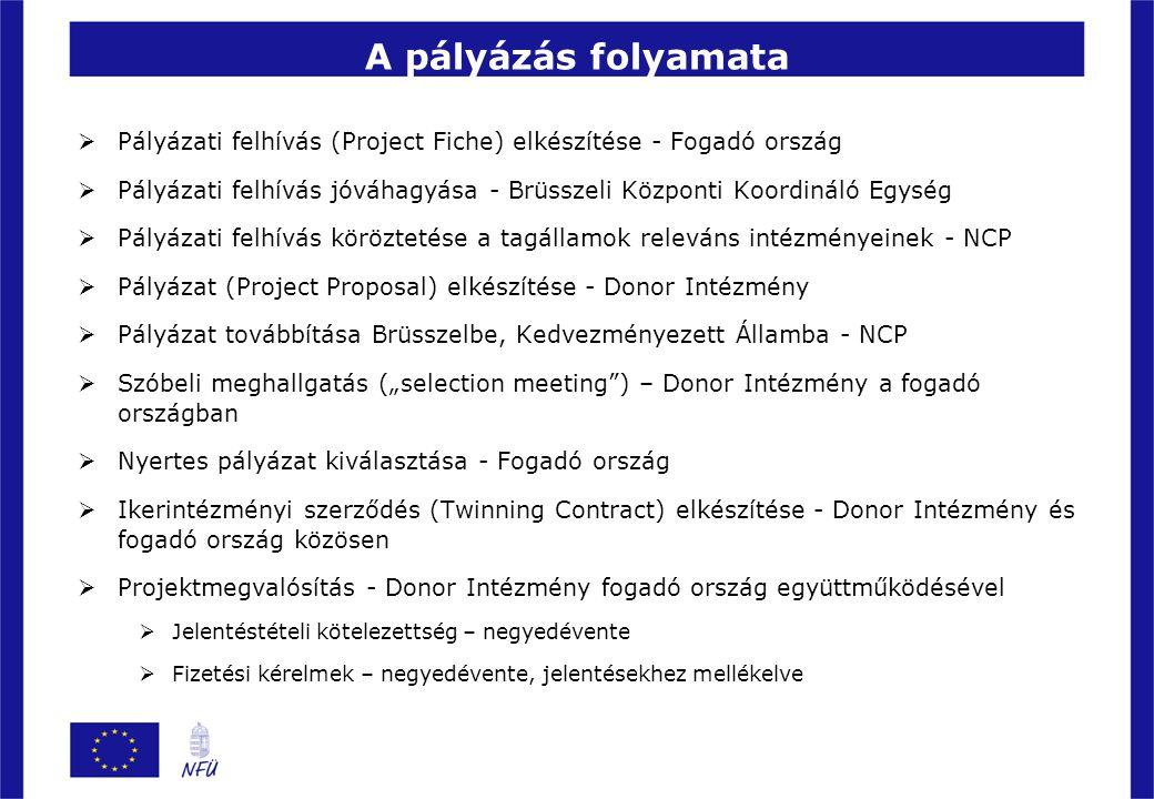 A pályázás folyamata Pályázati felhívás (Project Fiche) elkészítése - Fogadó ország.