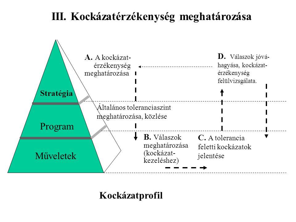 III. Kockázatérzékenység meghatározása