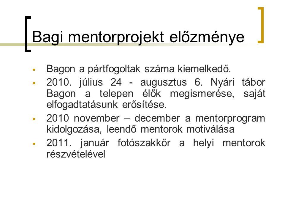 Bagi mentorprojekt előzménye