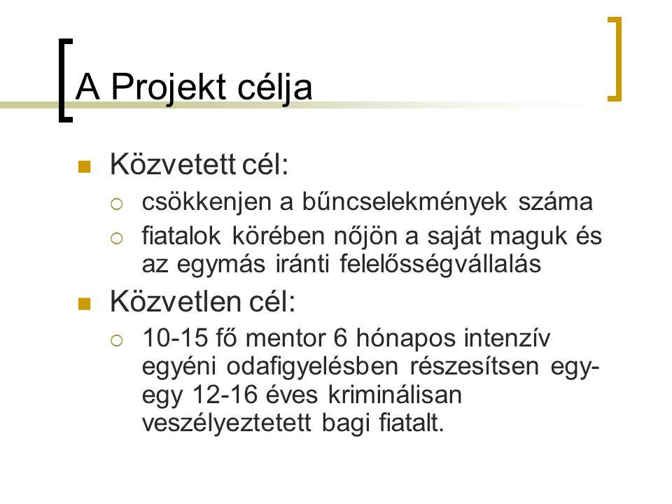 A Projekt célja Közvetett cél: Közvetlen cél: