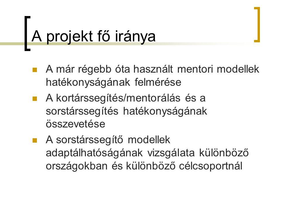 A projekt fő iránya A már régebb óta használt mentori modellek hatékonyságának felmérése.