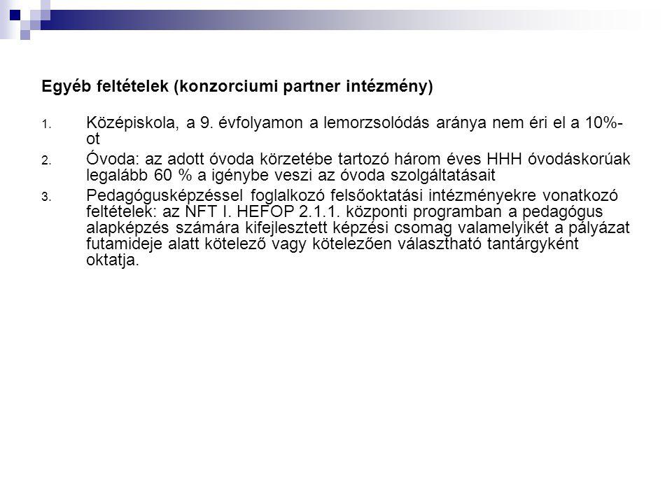 Egyéb feltételek (konzorciumi partner intézmény)