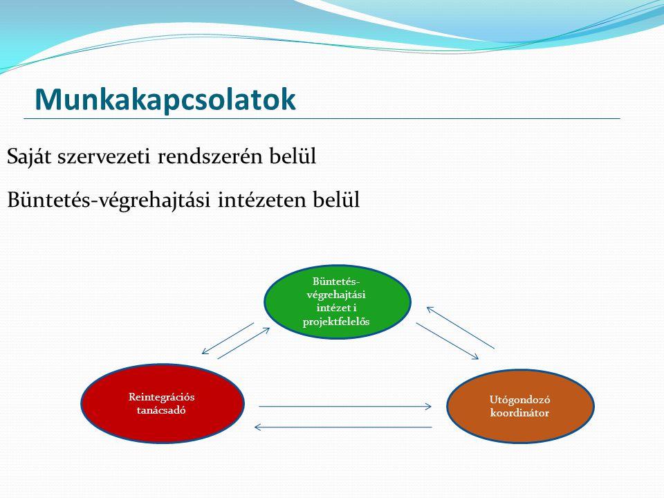 Munkakapcsolatok Saját szervezeti rendszerén belül