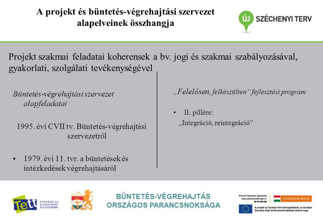 A projekt és büntetés-végrehajtási szervezet alapelveinek összhangja