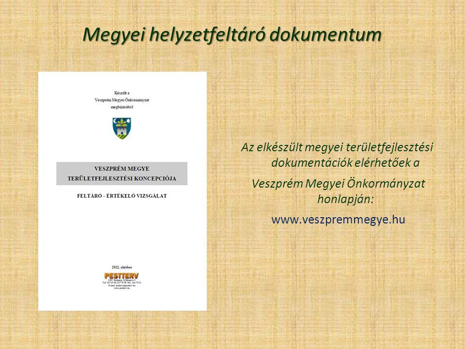 Megyei helyzetfeltáró dokumentum