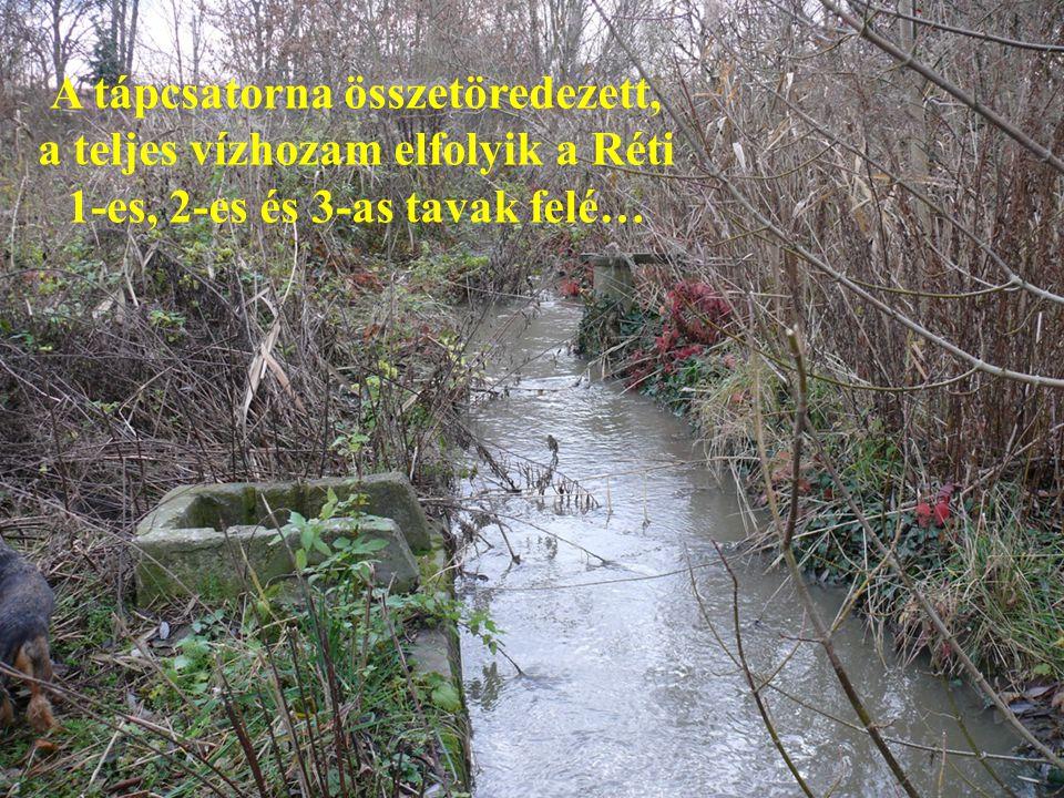 A tápcsatorna összetöredezett, a teljes vízhozam elfolyik a Réti 1-es, 2-es és 3-as tavak felé…