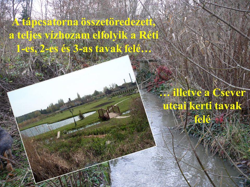 … illetve a Csever utcai kerti tavak felé