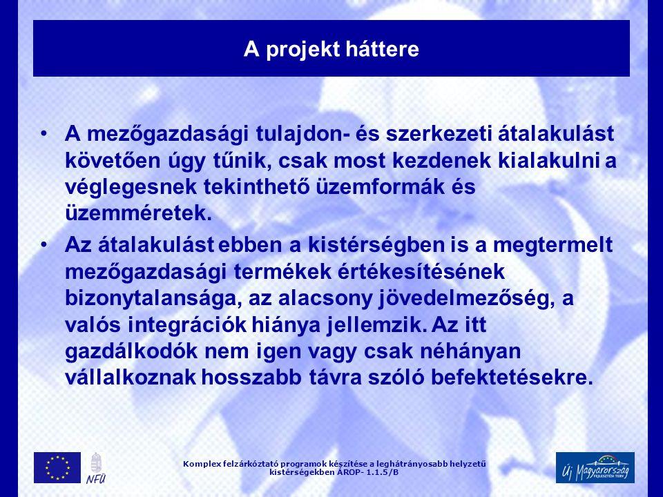 A projekt háttere