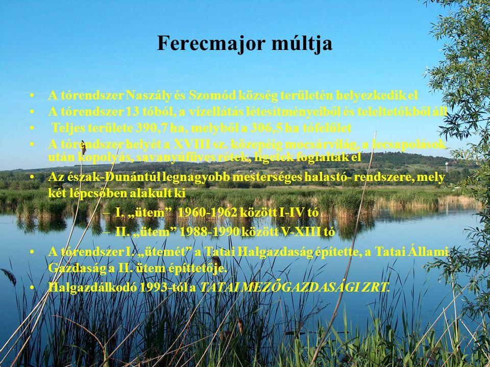 Ferecmajor múltja A tórendszer Naszály és Szomód község területén helyezkedik el.