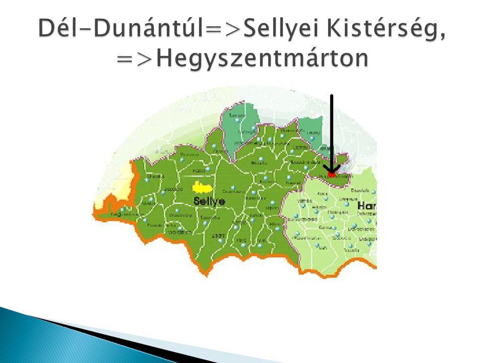 Dél-Dunántúl=>Sellyei Kistérség, =>Hegyszentmárton
