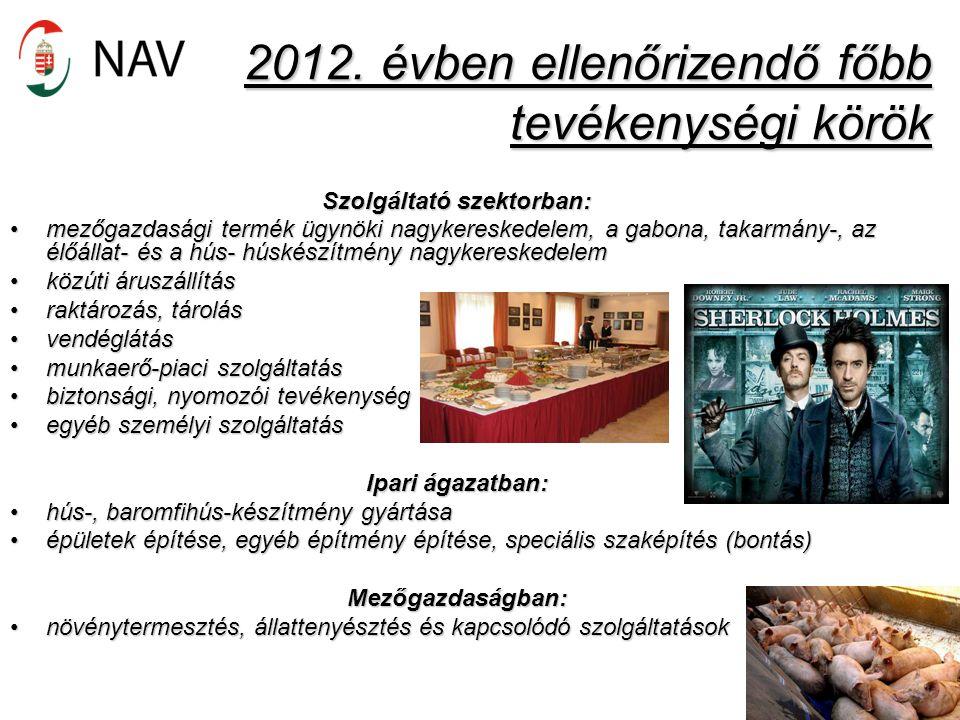 2012. évben ellenőrizendő főbb tevékenységi körök