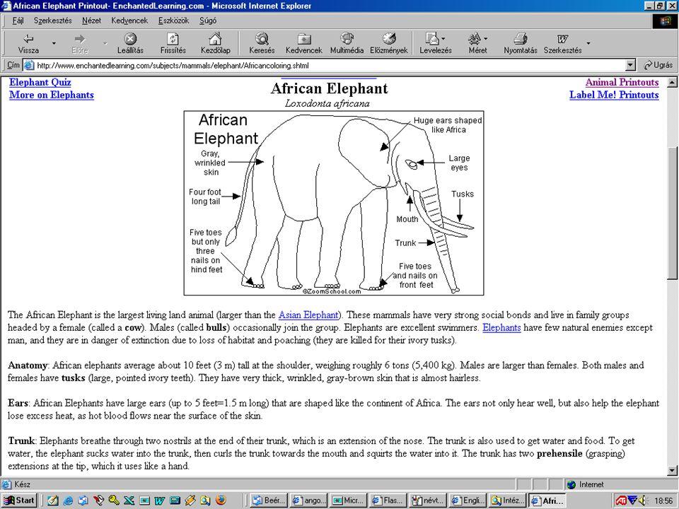 Képes szótár http://www.enchantedlearning.com/Dictionary.html